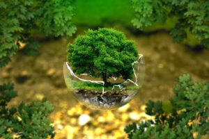 green cleaning products for commercial office cleaning