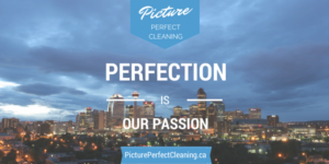 PPC Perfection is Our Passion featuring the city of Calgary
