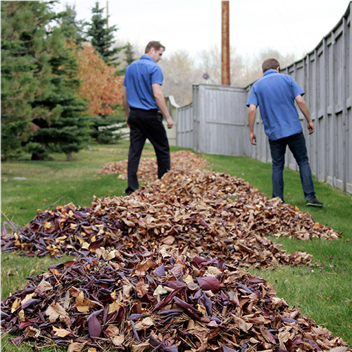 Two PPC employees raking leaves